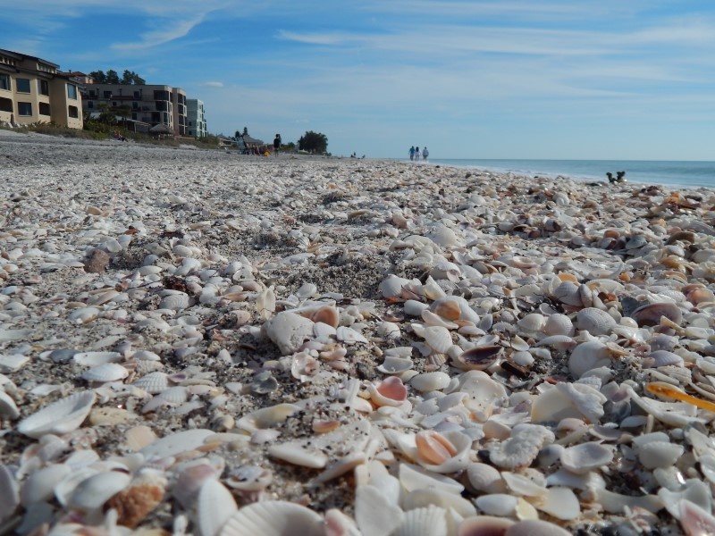 Englewood Beach Resorts  Picture Yourself Here ...