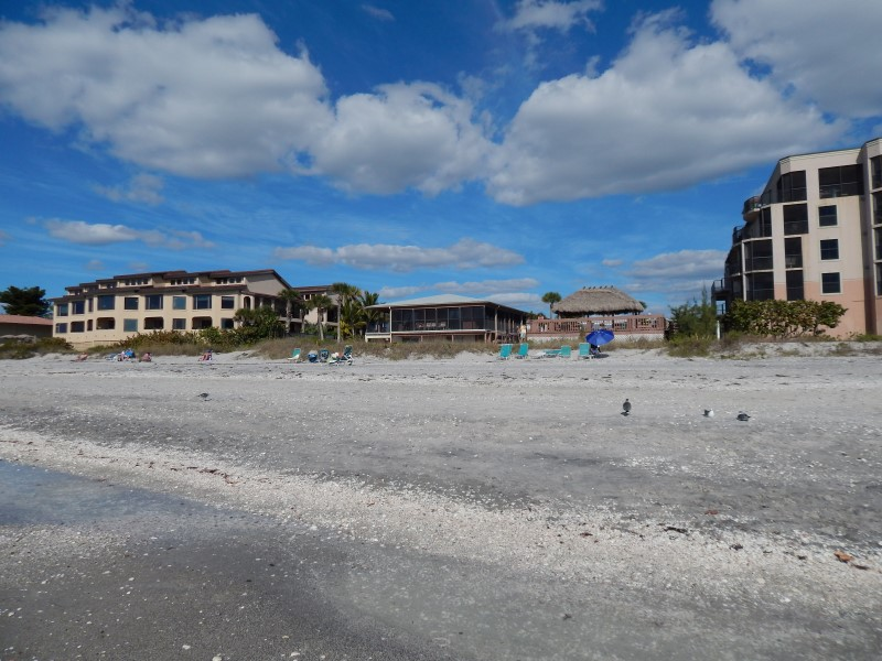 Englewood Beach Resorts |Sea Oats Beach Club - Englewood